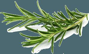 Gemüse – Gasthaus zur Linde